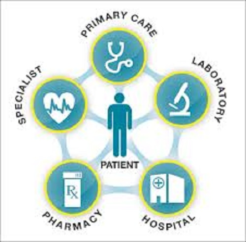 How Have Leading Companies Made Their Healthcare Systems Interoperable?