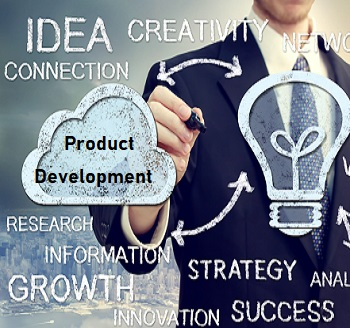 Software Product Development Strategies for the Now