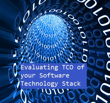 Evaluating the TCO of Your Software Development Stack